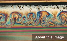 Image Gallery - Soap Film